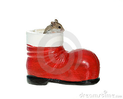 Hamster coming out of a Santa Boot Decoration