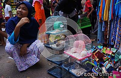 Hamster Editorial Stock Photo