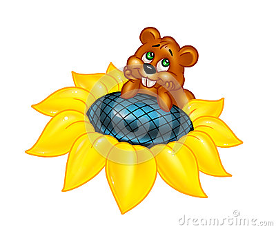 Hamster sunflower flower