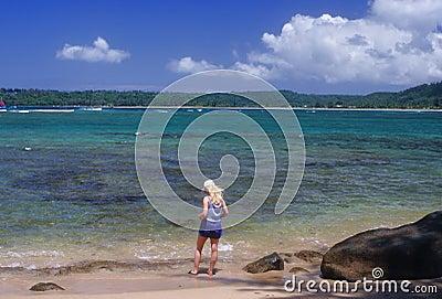 Hanalei Bay shoreline