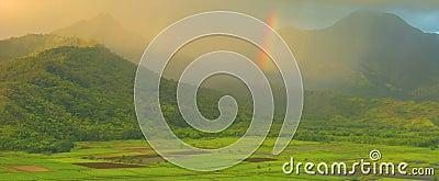 Hanalei Valley Rainbows, Kauai