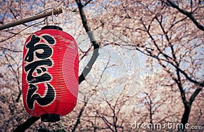 Hanami season in Japan