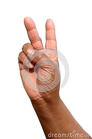 Hand 12