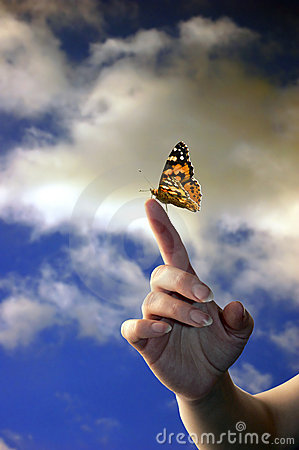 Free Hand And Butterfly Stock Image - 2025001