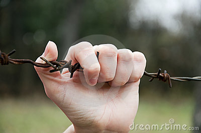 Hand on barbed wire