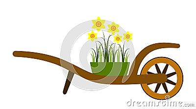 Hand barrow and daffodils
