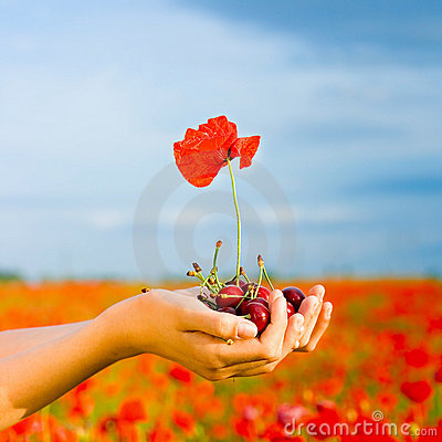 Hand with cherry and poppy