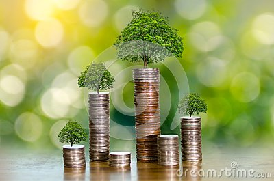 Hand Coin tree The tree grows on the pile. Saving money for the future. Investment Ideas and Business Growth. Green background wit Stock Photo