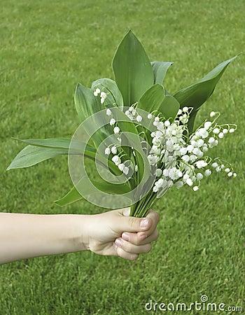 Hand with Convallaria majalis