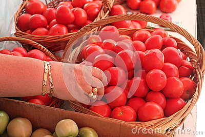 Hand, die Tomaten wählt