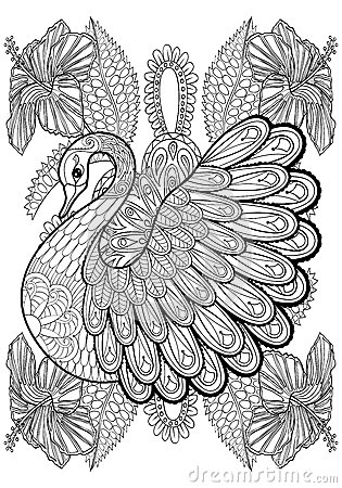 Hand Drawing Artistic Swan In Flowers For Adult Coloring