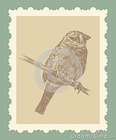 Hand drawing bird sketch
