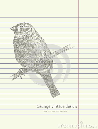 Hand drawing sketch bird vector