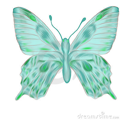 Hand drawn aquamarine butterfly