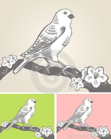 Hand drawn bird on a blossom branch