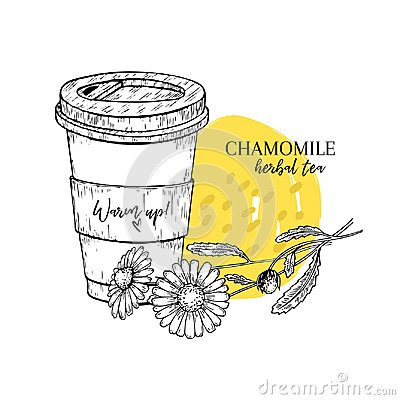 Free Hand Drawn Chamomile Herbal Tea To Go. Tea Cup, Daisy Flower. Vectror Engraved Art. Healing Warm Tea In Paper Cup. Food Stock Images - 117293314