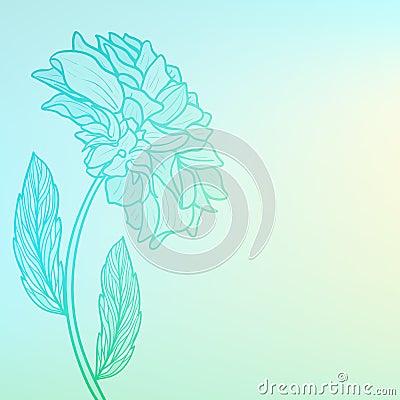 illustration soft floral - photo #41