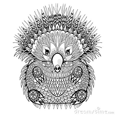 Hand drawn echidna australian animal illustration for for Australian animal coloring pages