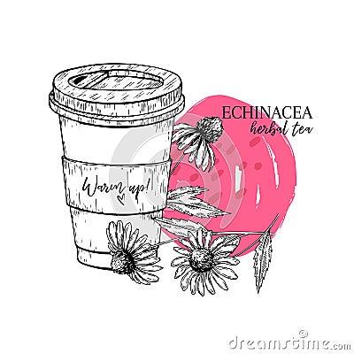 Free Hand Drawn Echinacea Herbal Tea To Go. Tea Cup, Purpurea Flower. Vectror Engraved Art. Healing Warm Tea In Paper Cup Royalty Free Stock Image - 117293336