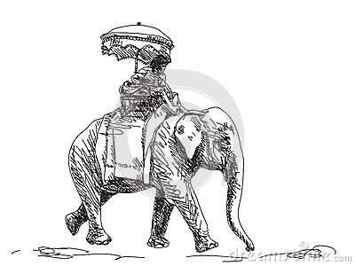 Hand drawn elephant Vector Illustration