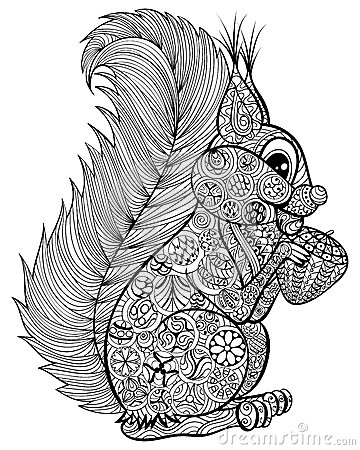 Hand drawn funny squirrel with nut for adult anti stress coloring page