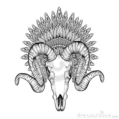 Animal Skull Headdress Drawing | www.pixshark.com - Images ...