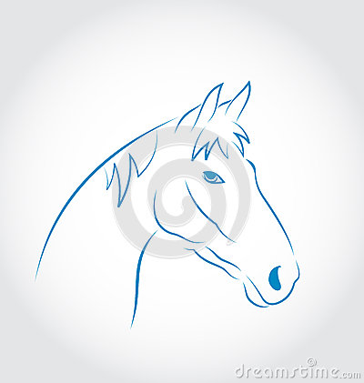 Hand drawn head horse  on white background