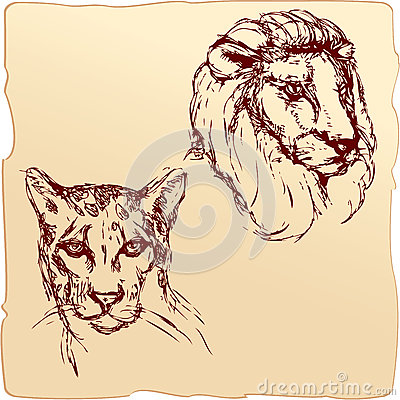Hand drawn ink portrait sketch of lion