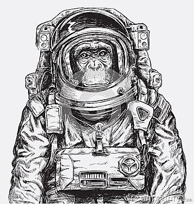 Free Hand Drawn Monkey Astronaut Vector Stock Photo - 77167830