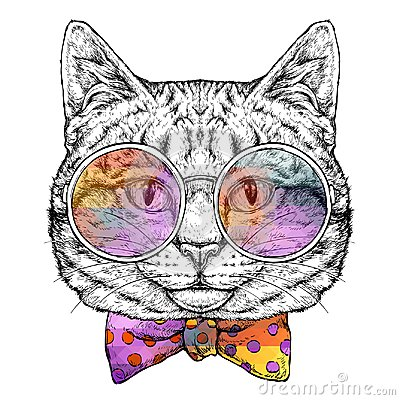 Free Hand Drawn Portrait Of Cat In Glasses With Bow Tie. Vector Illustration Isolated On White Stock Images - 115382254