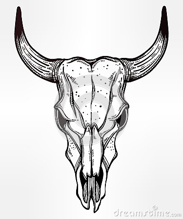 Cow skull tattoo flash - photo#7