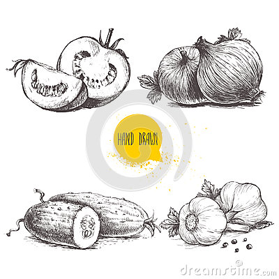 Free Hand Drawn Sketch Style Vegetables Set. Sliced Tomatoes, Onions, Cucumbers And Garlics. Stock Photography - 87473842