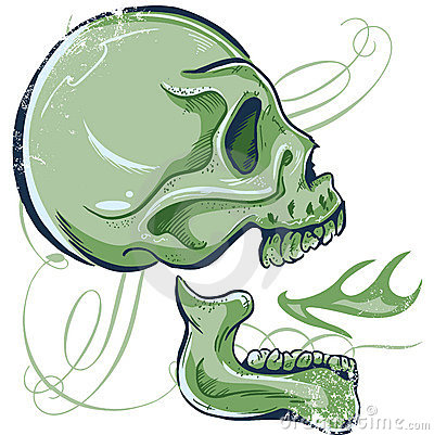Hand Drawn Skull illustration side view