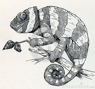 Hand drawn smiling chameleon