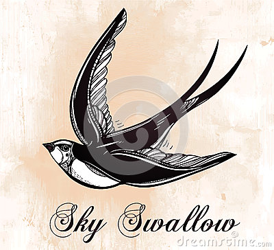 Stock Illustration Hand Drawn Swallow Bird Vintage Retro Style Flying ...