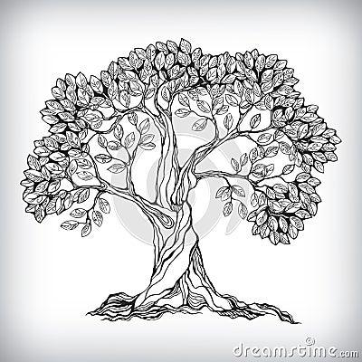 Hand drawn tree symbol