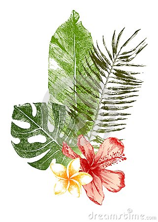 Free Hand Drawn Tropical Leaves And Flowers Royalty Free Stock Photo - 45507095