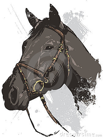 Hand drawn vector illustration of a wild horse