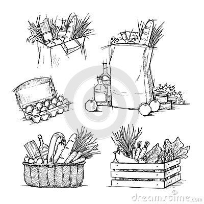 Free Hand Drawn Vector Illustrations - Shopping Bags With Healthy Food Stock Image - 64123121