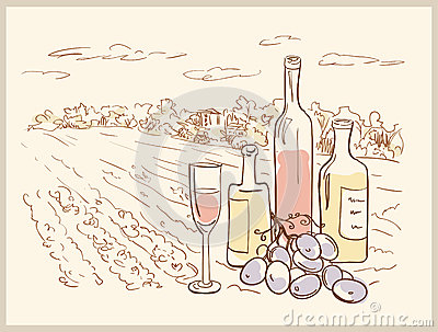 Hand drawn vineyard.