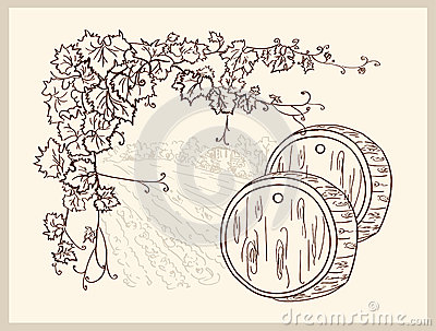 Hand drawn vineyard.