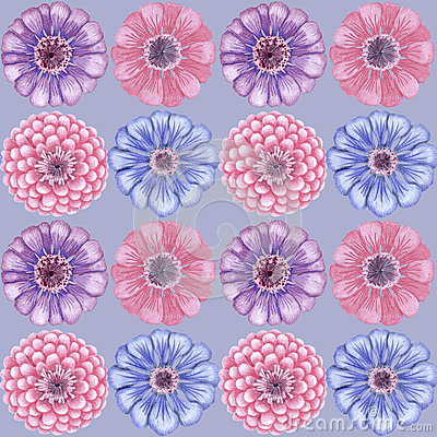 Hand-drawn vintage zinnia pattern