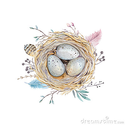 Free Hand Drawn Watercolor Art Bird Nest With Eggs , Easter Design. Royalty Free Stock Photography - 68264787