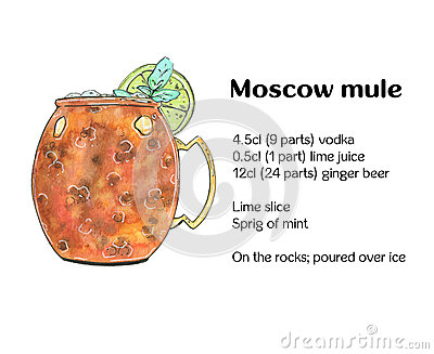 Hand drawn watercolor cocktail Moscow mule Vodka buck on white background Stock Photo