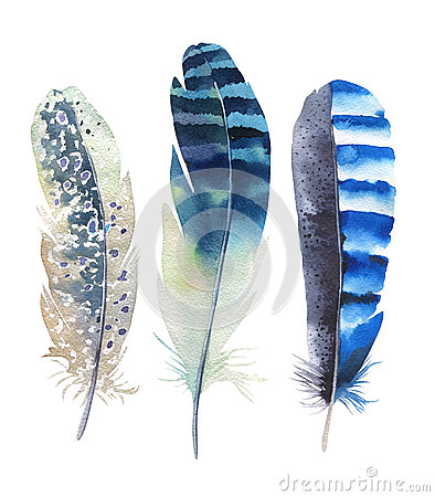 Free Hand Drawn Watercolor Feather Set. Boho Style. Illustration Isolated On White. Design For T-shirt, Invitation, Wedding Card. Royalty Free Stock Photos - 66904958