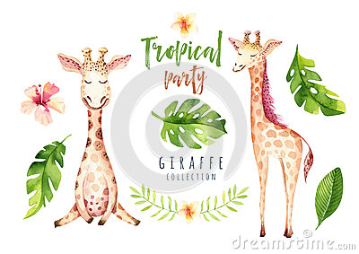 Hand drawn watercolor tropical plants set and giraffe. Exotic palm leaves, jungle tree, brazil tropic botany elements Stock Photo