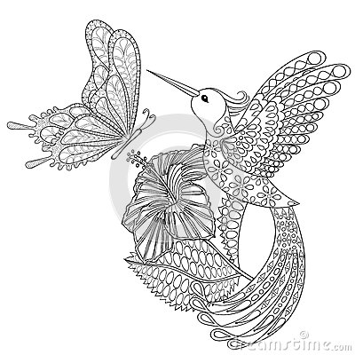 Zentangle Hummingbird Coloring Pages Coloring Pages
