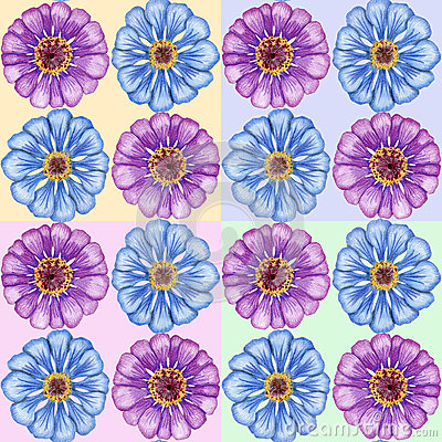 Hand-drawn zinnia seamless pattern
