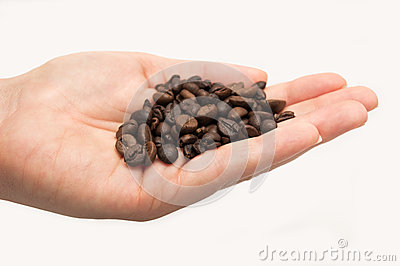 Hand full of coffee beans