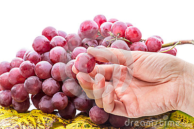 Hand with a grape